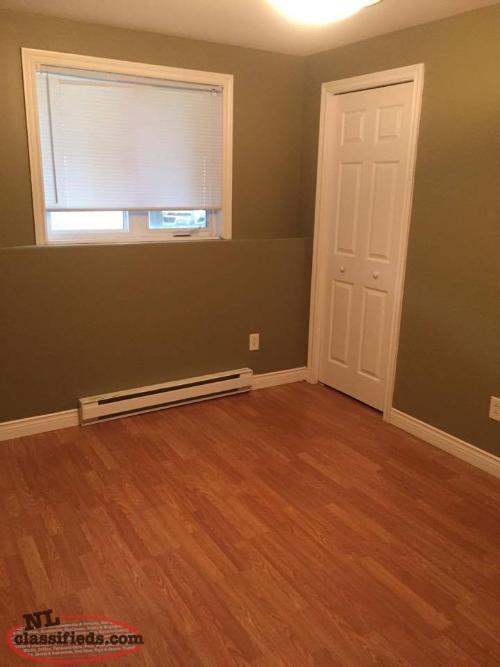 2 Bedroom Basement Apartment For Rent  St John's