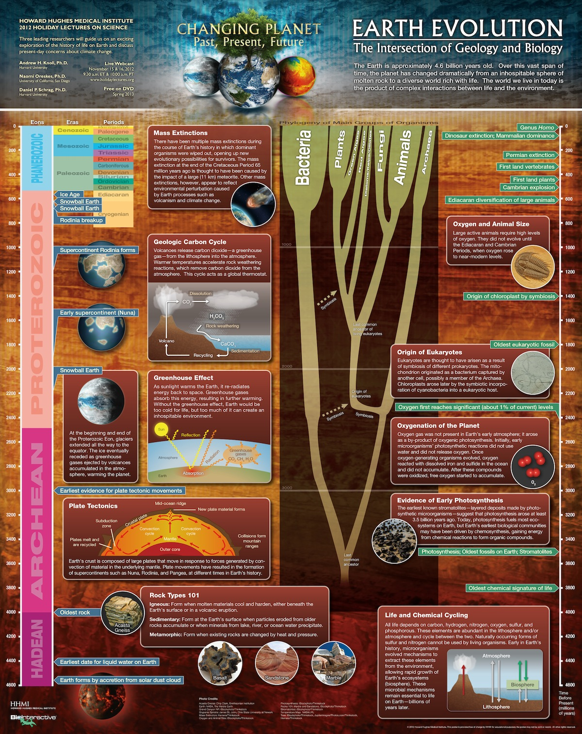 This Timeline Is A Crash Course In How Geology Worked With