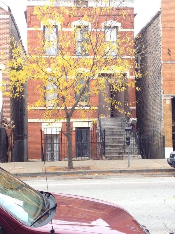 Book Club House on Mango Street Sandra Cisneros and targets of violence  WBEZ