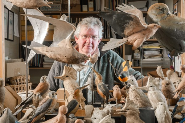 Ward Museum Presents In World Carver & Sculptor