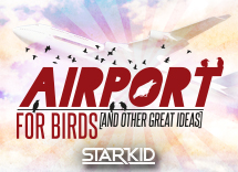 Team Starkid: Airport for Birds