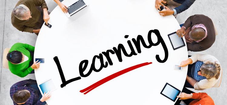 o que é Social Learning
