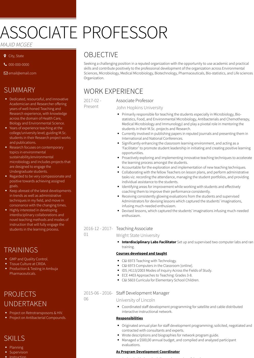 computer professor resume sample