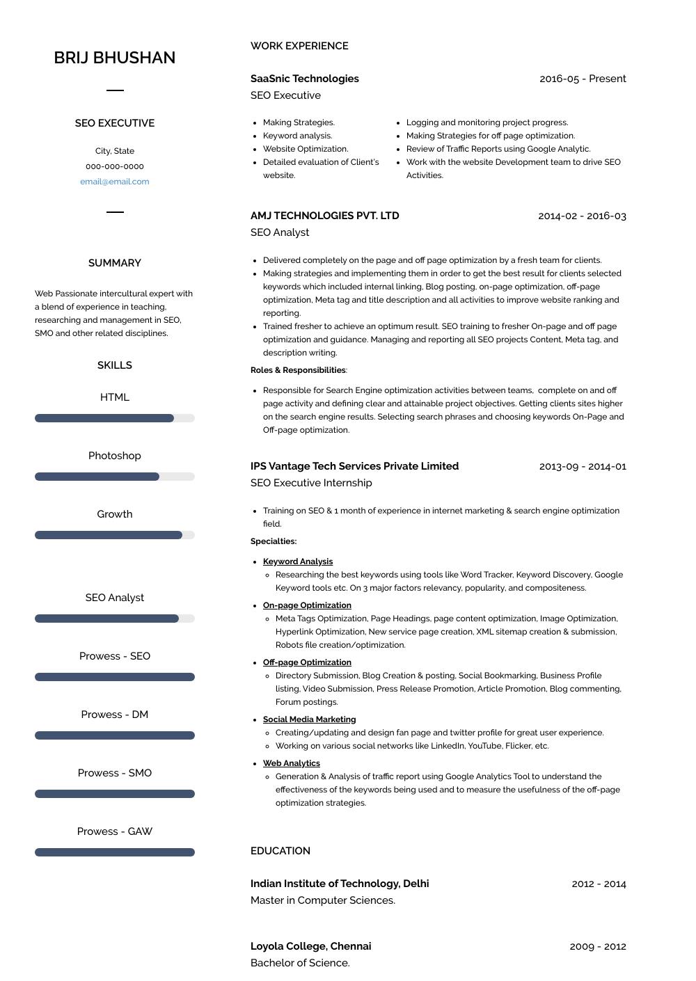 seo executive resume template