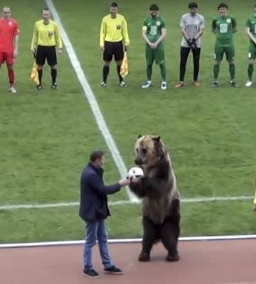 Inician partido con show de oso amordazado enRusia