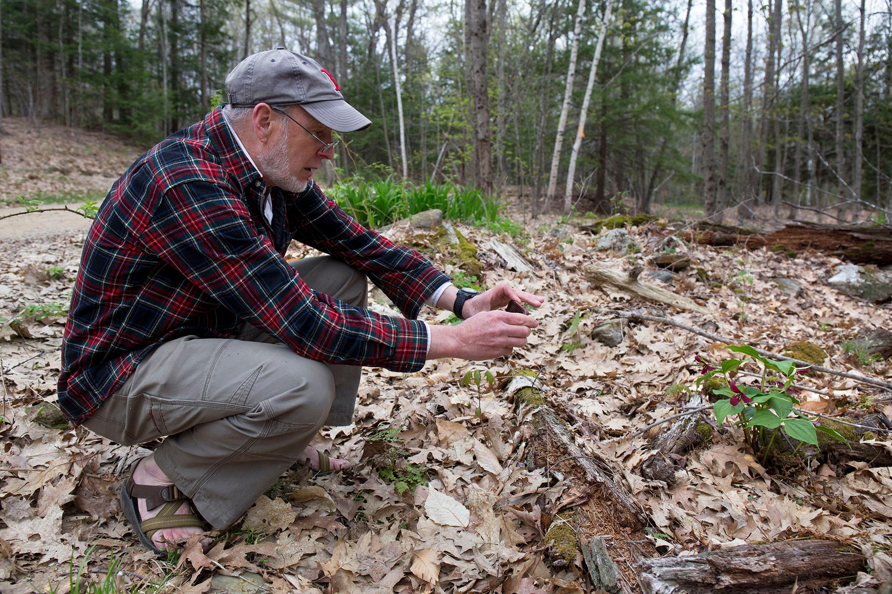 Stephen Blackmer pauses to photograph red trillium peeking through the underbrush.