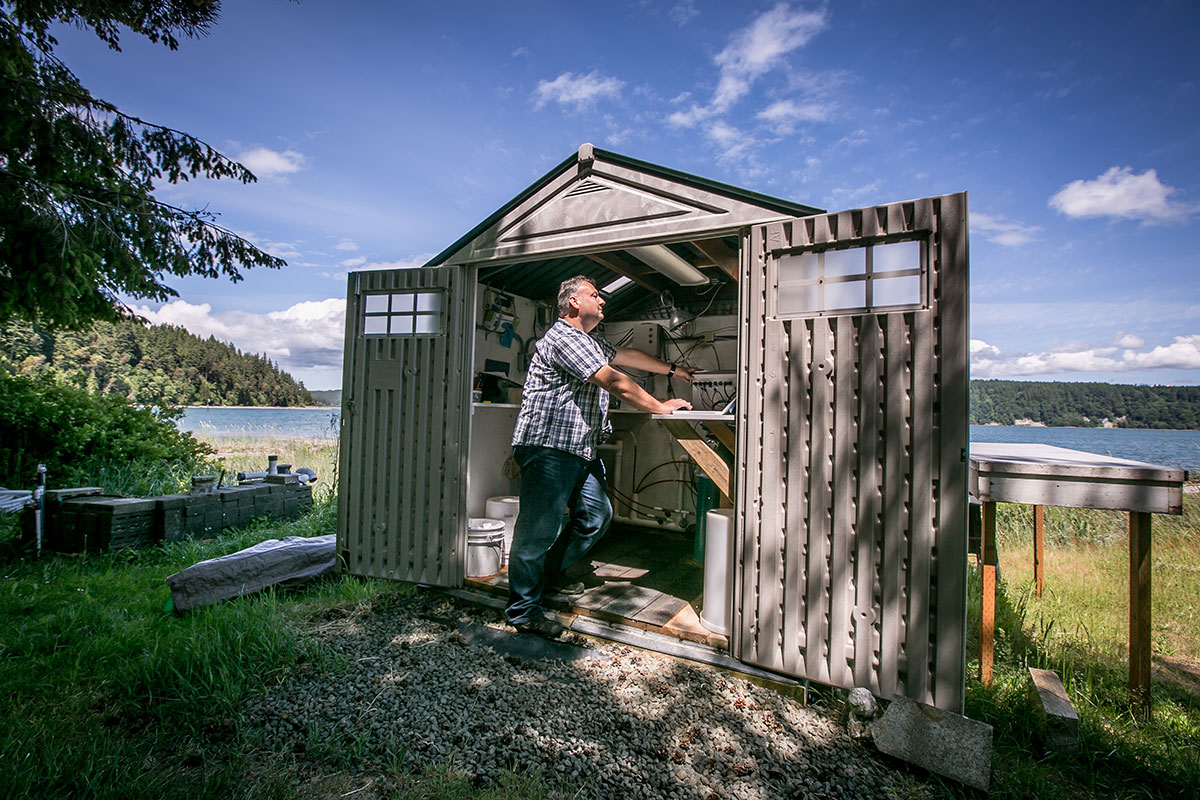 Benoit Eudeline, Taylor Shellfish's director of research and technology, tracks ever-changing ocean conditions from a garden shed at the shore.