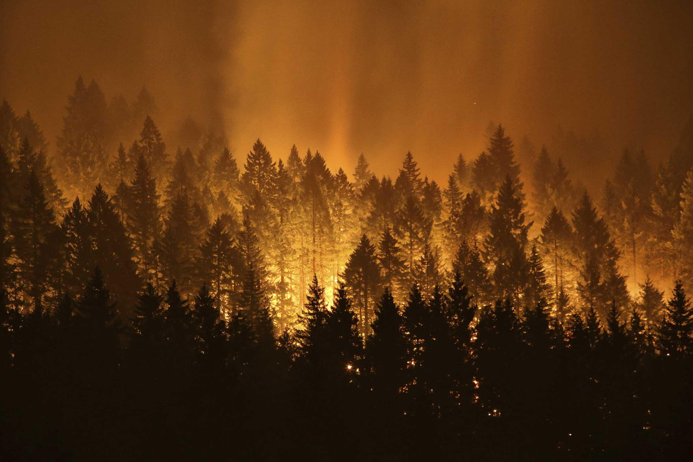 A wildfire tore through Oregon's Columbia River Gorge near Cascade Locks and Bridge of the Gods in early September. (Genna Martin/seattlepi.com via AP)