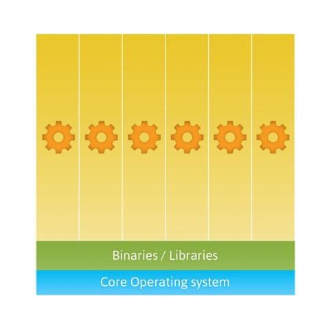 Figure 2. Containers can share a single operating system and, optionally, other binary and library resources.