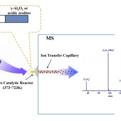 Schematic Diagram Of Mass Spectrometer Crimestopper Sp 101 Wiring Short Lived Cationic Species Profiling By