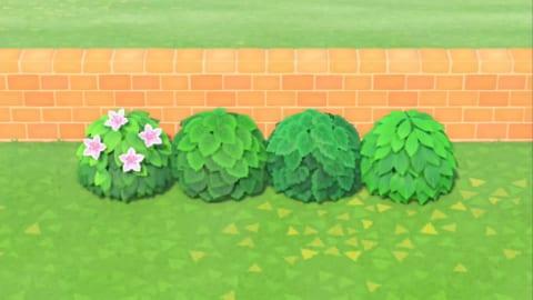 森 ツツジ あつ 【あつ森】低木の種類と開花時期一覧【あつまれどうぶつの森】|ゲームエイト