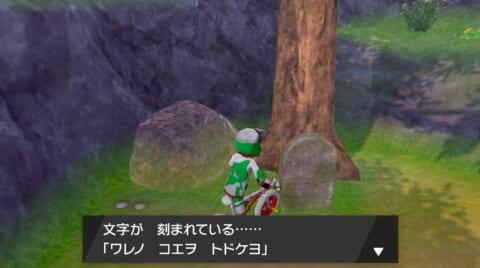 墓石を調べる