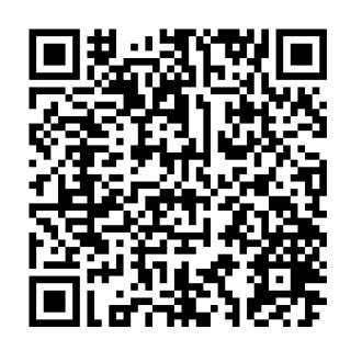 サンムーン qr もらえる ポケモン コード ポケモン で 繝昴こ繝「繝ウ 繧オ繝ウ繝繝シ繝ウ