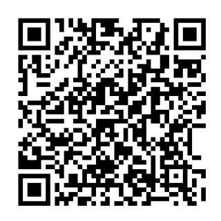 ポケモン usum qr コード