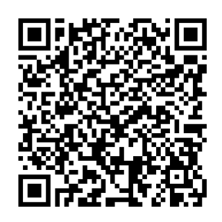 ムーン ポケモン qr コード ウルトラ