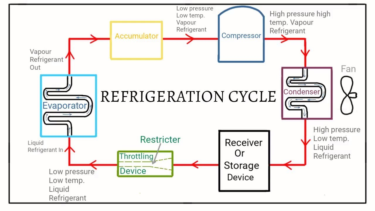 hight resolution of however they re being replaced by more eco friendly refrigerants such as ammonia r 290 r 600a etc refrigeration cycle