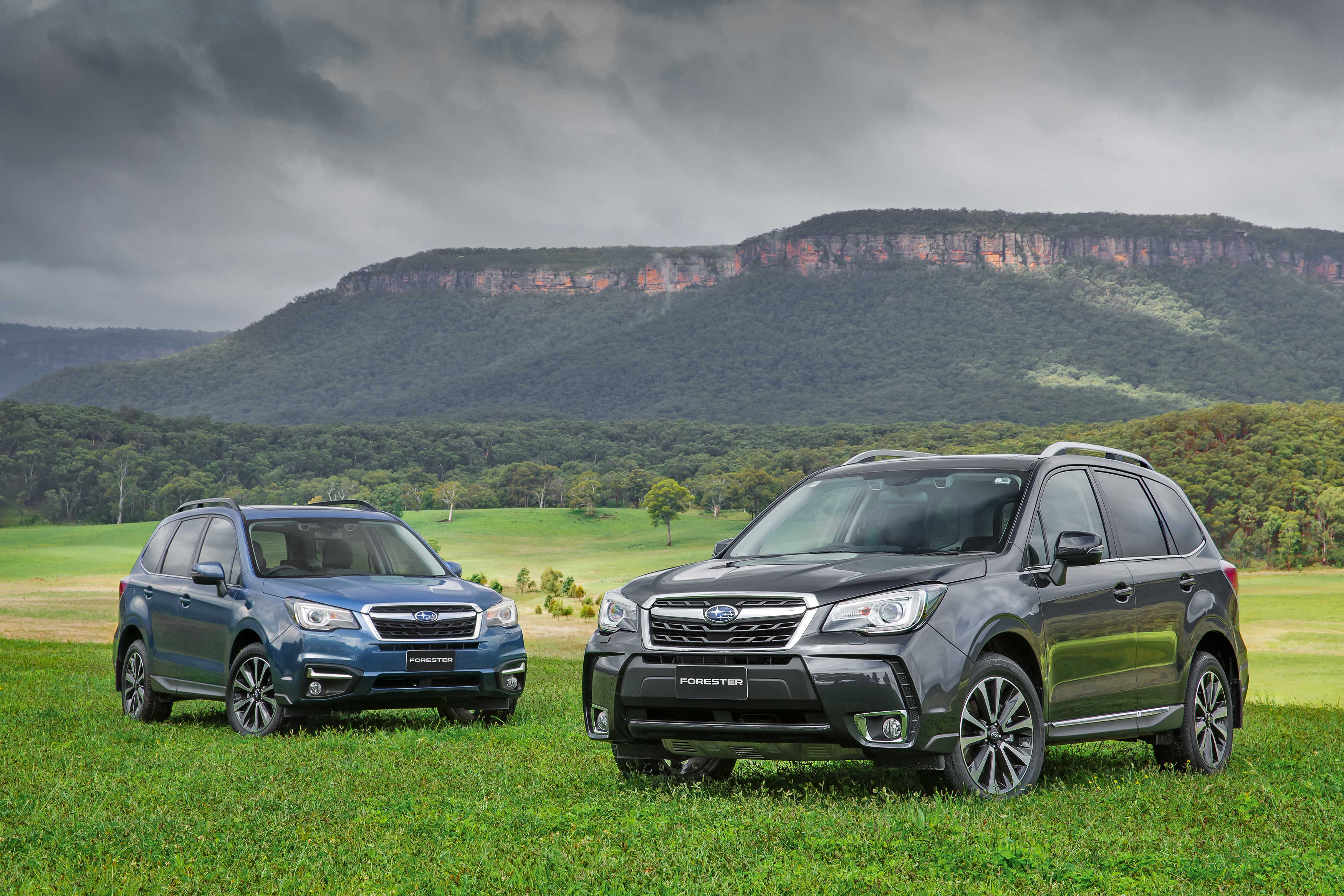 Subaru Forester Pricing And Specifications