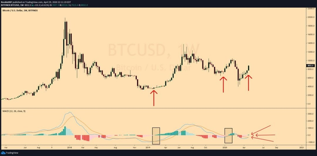 Bitcoin weekly chart sees start of new MACD trend. Source: RookieXBT​​​​​​​