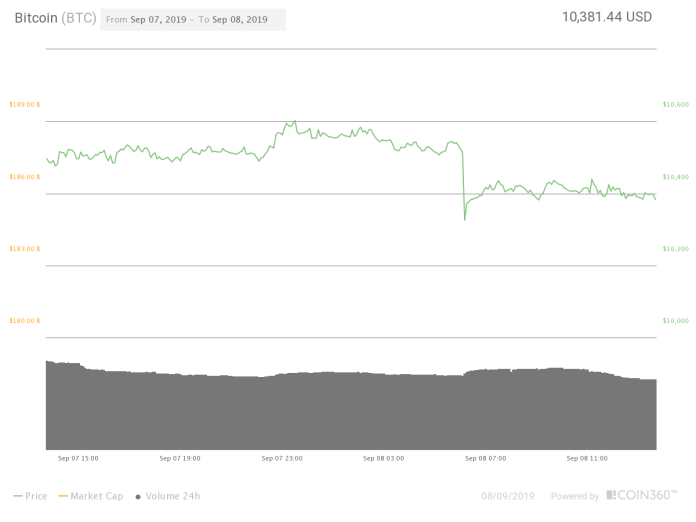 Bitcoin's 24-hour price chart. Source: Coin360