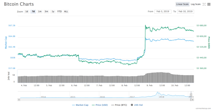 Bitcoin 7-day price chart