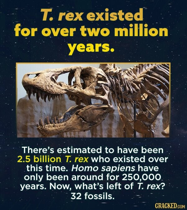 T. rex existed for over two million years. There's estimated to have been 2.5 billion T. rex who existed over this time. Homo sapiens have only been around for 250,000. years. Now, what's left of T. rex? 32 fossils. CRACKED.COM
