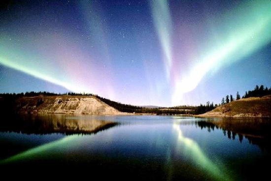 Ucla Northern Lights