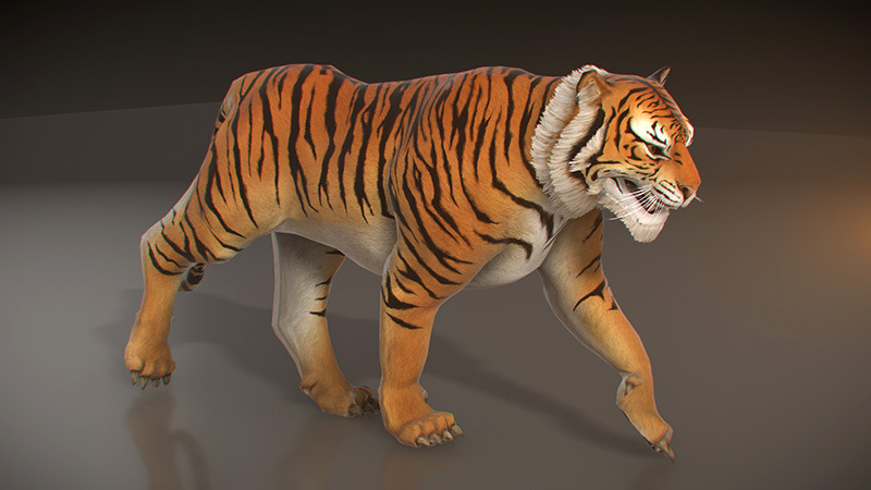 Ice Wolf 3d Wallpaper Animated Tiger Low Poly By Pixelgem 3docean