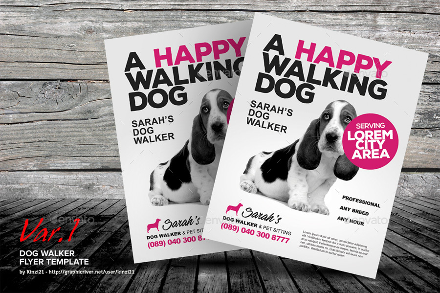 Dog Walker Flyer Templates By Kinzi21 GraphicRiver