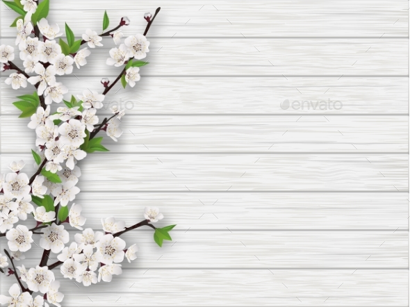 Seasonal Fall Coffee Desktop Wallpaper Spring Cherry Branch On White Old Wood Background By