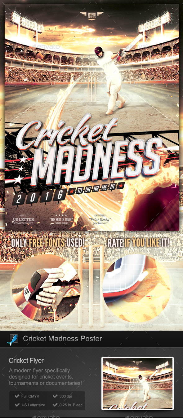 Cricket Madness  Flyer Template by StormDesigns  GraphicRiver
