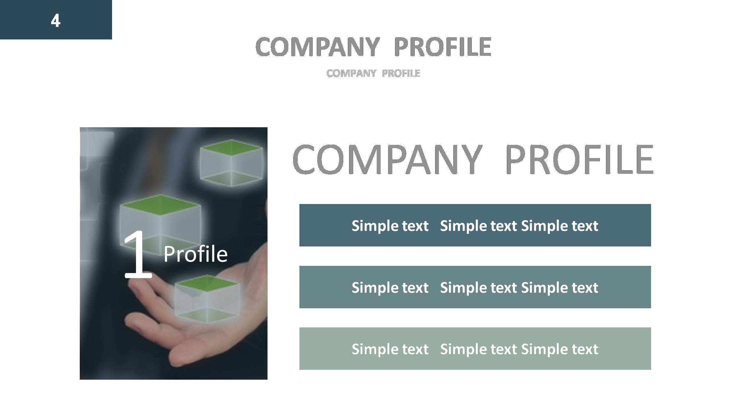 Company profile Google Slides Presentation Template by GardeniaDesign