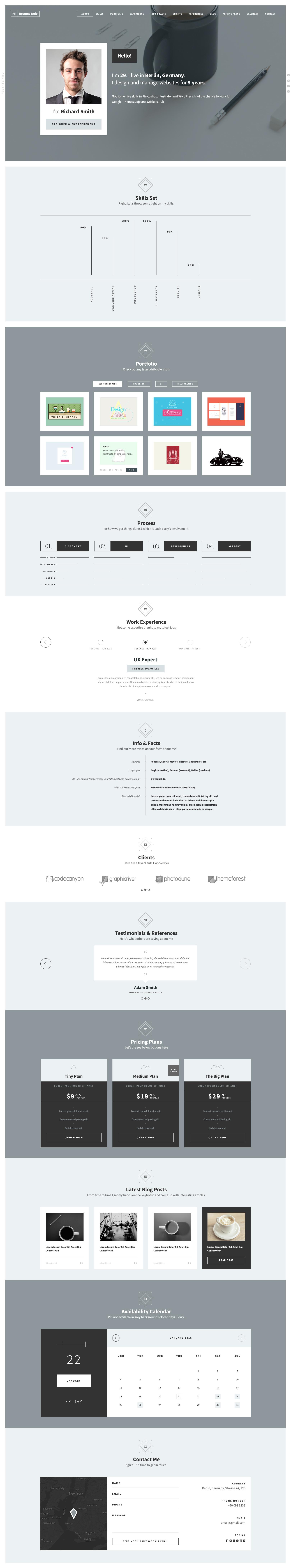 Previews/resumedojo-Resume.jpg