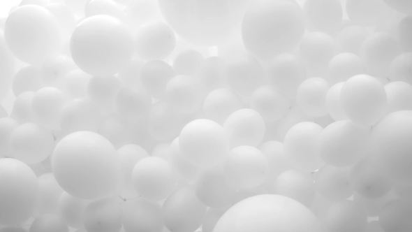 lot of white balloons