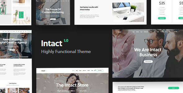 Intact - Premium Multi-Purpose WordPress Theme - Creative WordPress