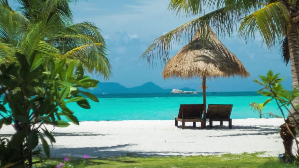 beach chairs and umbrella mesh pool lounge palms on the dreamy look koh lipe island thailand asia stock footage