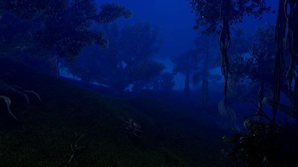 night magic forest 4k