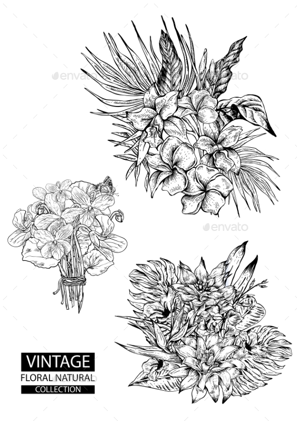 Floral Outline Coloring Vector Vintage Collections by