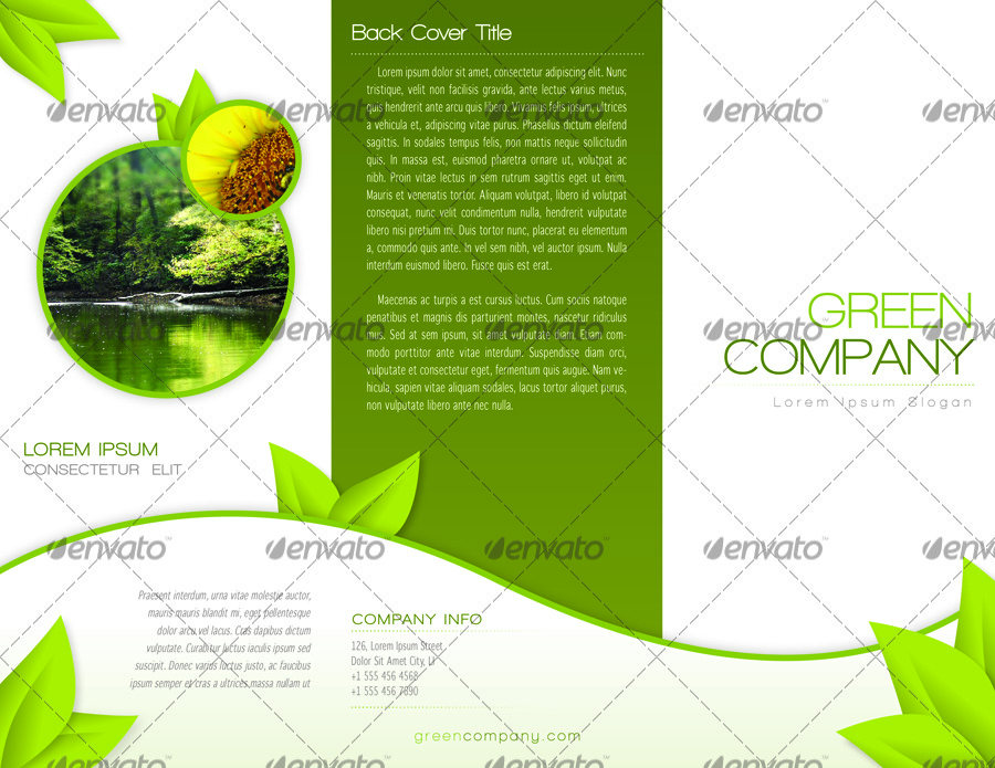 8 panel brochure template indesign