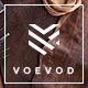 Download Voevod - A Bespoke WooCommerce Theme from ThemeForest
