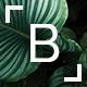 Download Bridge - Creative Multi-Purpose WordPress Theme from ThemeForest