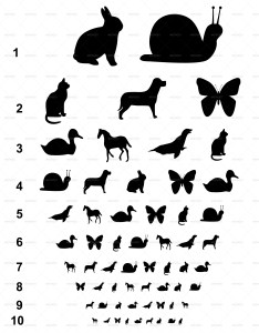 Visual eye charts with animals for kids also by fotografkagabriela rh graphicriver