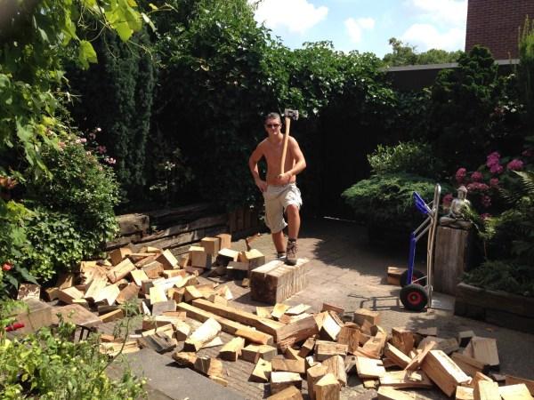 boomstam brandhout