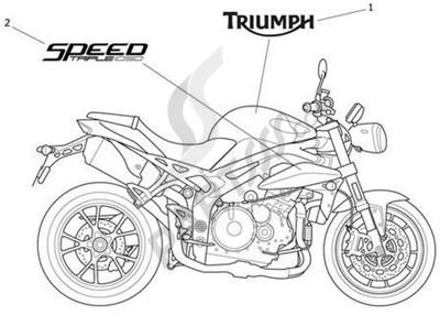 Despiece Triumph SPEED TRIPLE VIN FROM 461332 UNTIL 735337