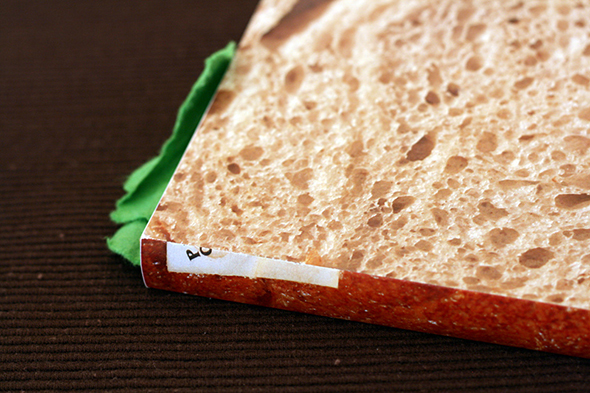 sandwich_book_picame4