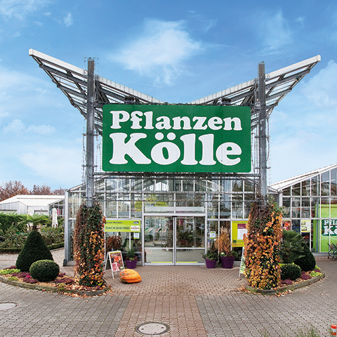Pflanzen Kölle Gartencenter GmbH & Co KG Fellbach In 70734 Fellbach
