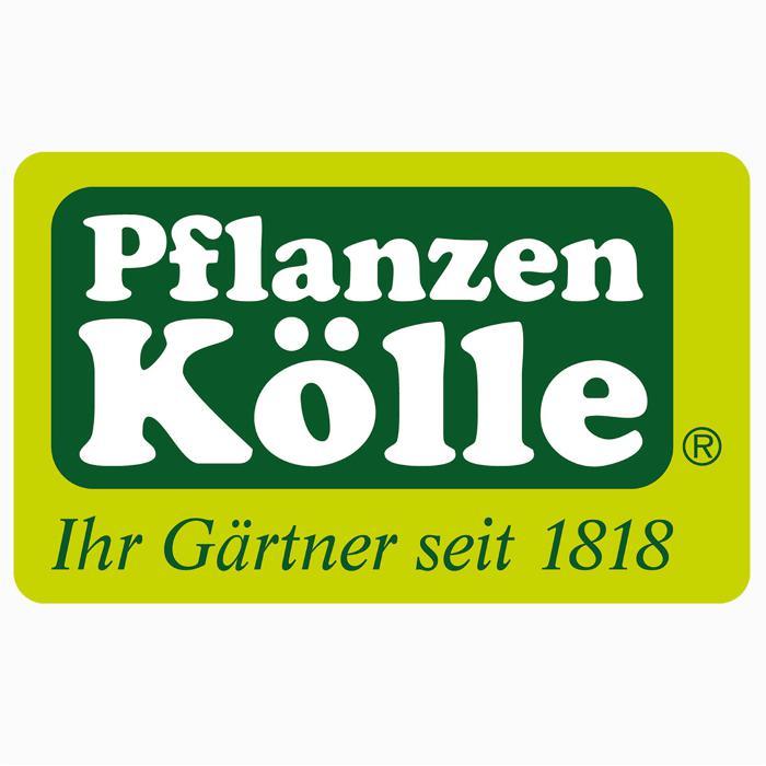PflanzenKlle Gartencenter GmbH  Co KG Nrnberg in