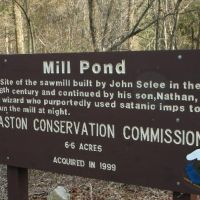 The Mill Pond Wizard of Easton Conservation
