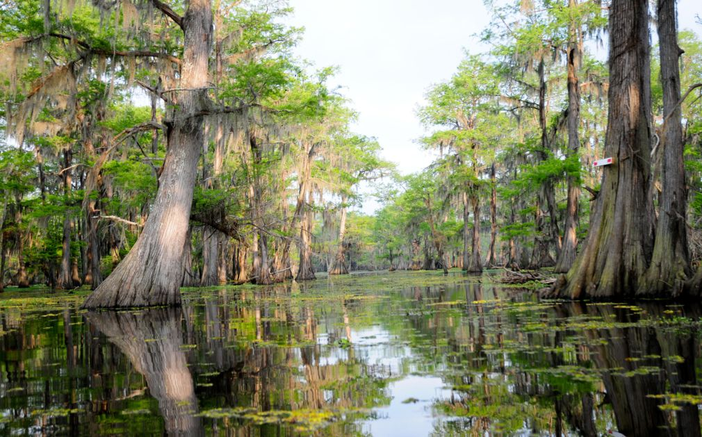 Luxury Holidays To The Deep South Original Travel