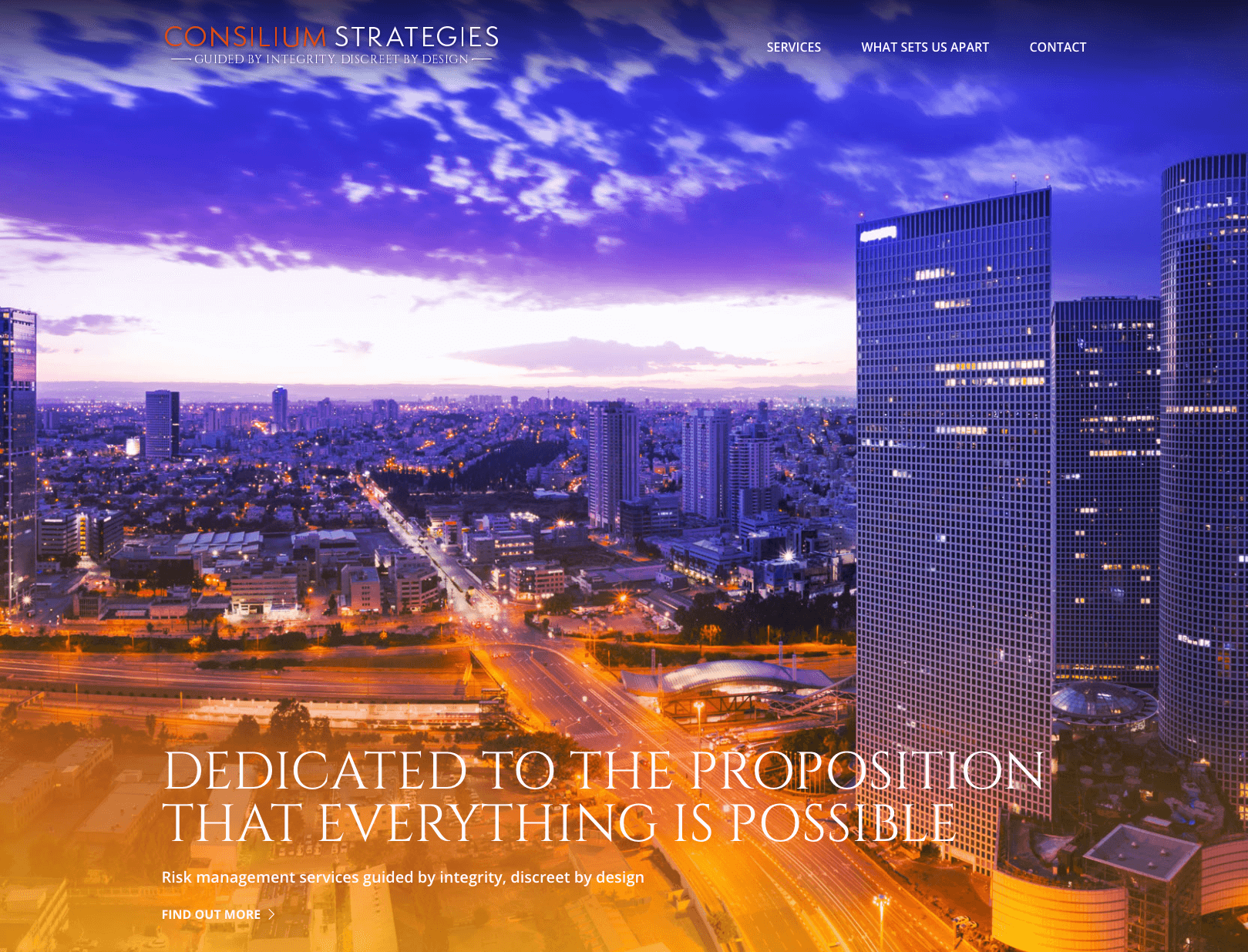 Consilium Strategies Header Image