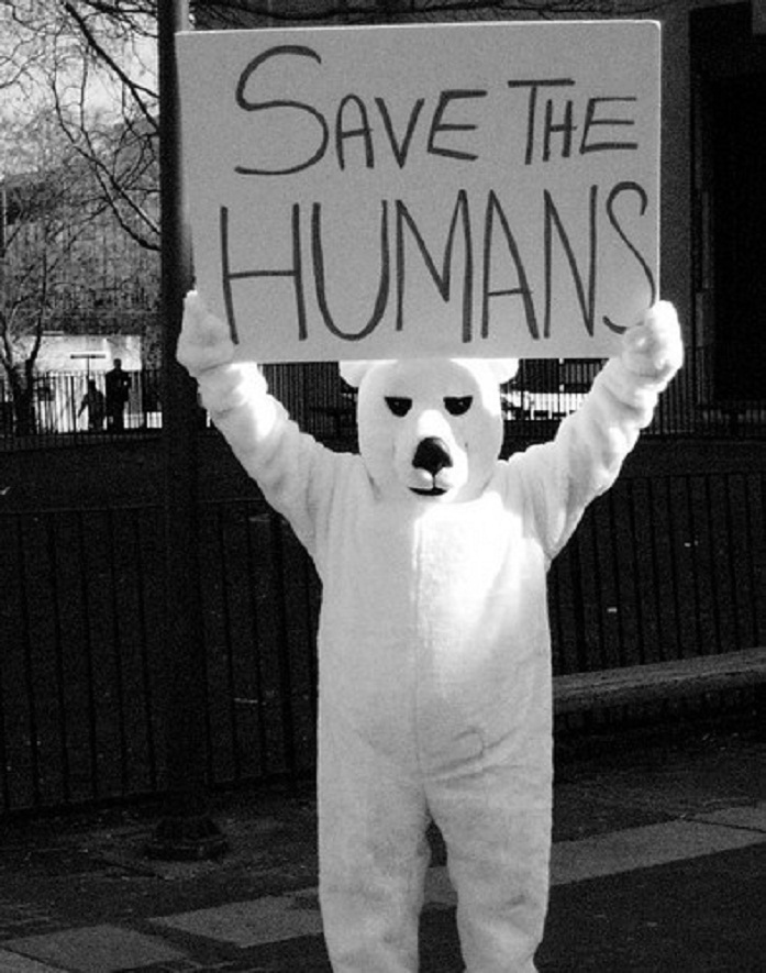 bear, black and white, save the humans